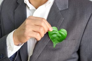 person holding a green leaf