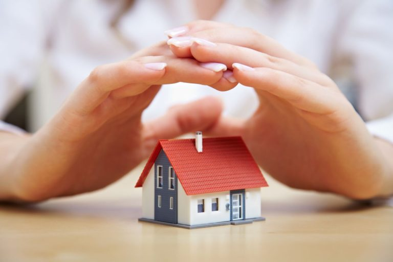 hand over miniature house