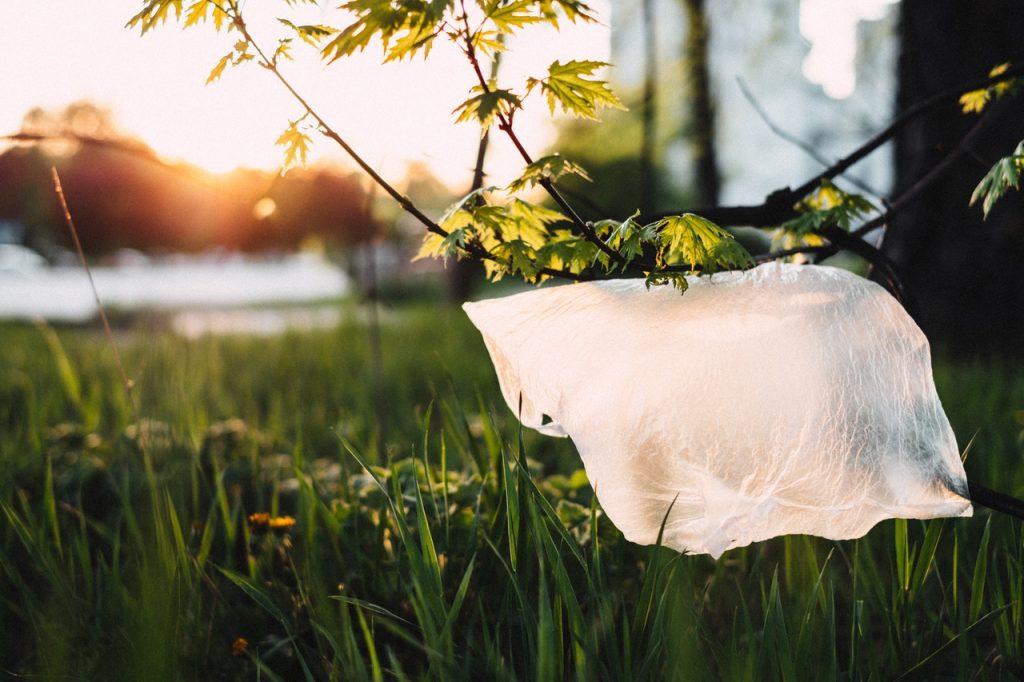 plastic bag on grass